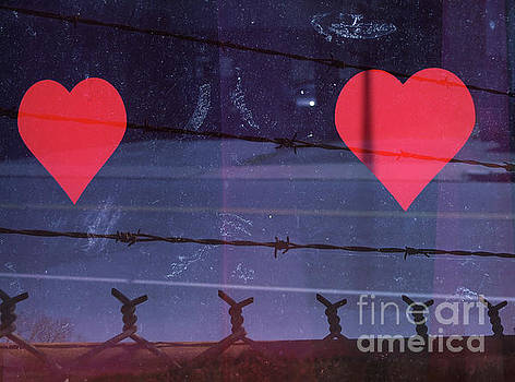 Hearts and Barbed Wire by Jonathan Welch