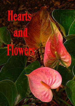Hearts and Flowers Valentine's Day by Rosalie Scanlon