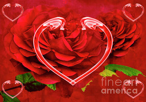 Hearts And Roses by Steve Purnell