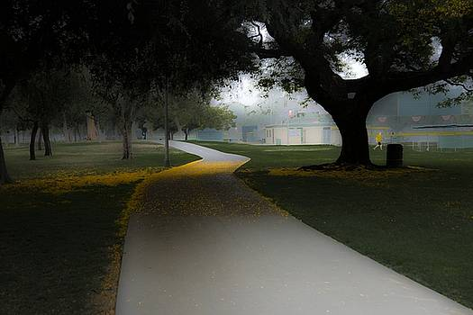 Heartwell Park by Roland Peachie