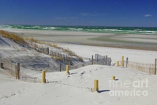 Heaven at Mayflower Beach by Amazing Jules