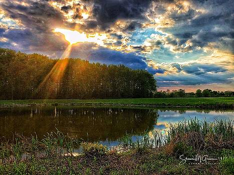 Heaven Bursts Forth on the Pond by Shawn M Greener