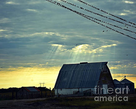 Heavenly Barn Light by Kathy M Krause