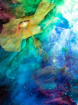 Angie Hamlin - Heavenly Hibiscus