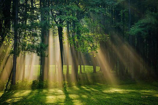 Heavenly Light Sunrise by Christina Rollo
