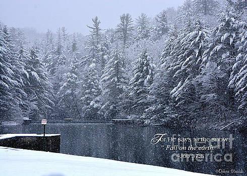 Heavenly Snowfall by Debra Straub