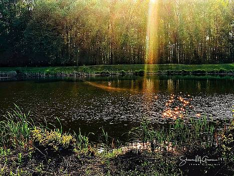 Heaven's Light on the Pond by Shawn M Greener