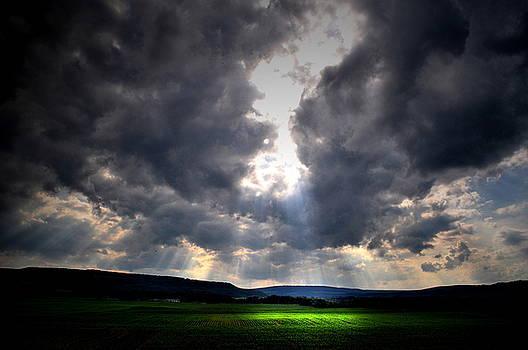 Emily Stauring - Heavens Part