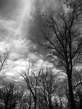 Heavens Smiling by Sheryl Burns