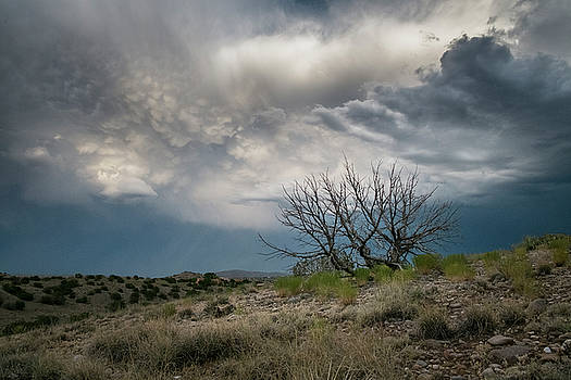 Heavy Clouds No Rain by Mary Lee Dereske