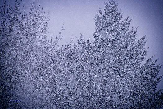 Mick Anderson - Heavy Snow