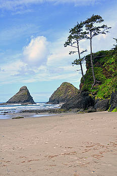 Heceta Head - Meditation At The Beach by Image Takers Photography LLC - Laura Morgan