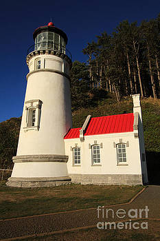 California Views Mr Pat Hathaway Archives - Heceta Lighthouse, Devils Elbow, Oregon