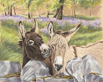 Hee Haw by Vanda Luddy