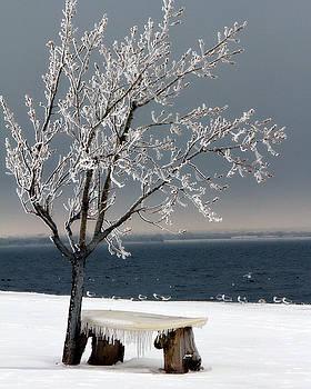 Lana Trussell - Hefner Winter