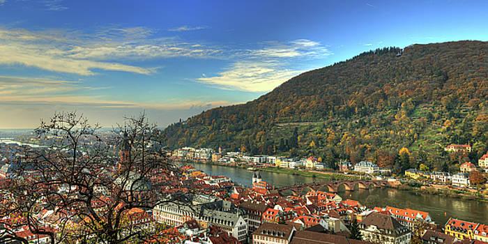 Heidelberg Panorama by Darin Williams