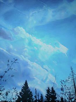 Height in Wilderness  by Mackenzie Matthews