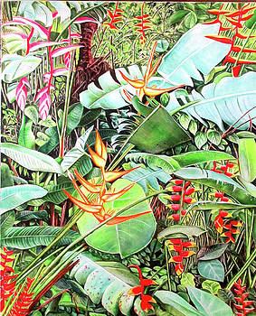 Helconias In The Jungle by Suzahn King