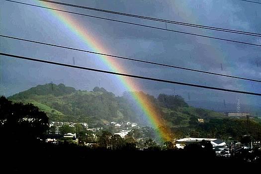 Hella Rainbow by Robert Stupack