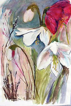 Hellebore by Sibby S