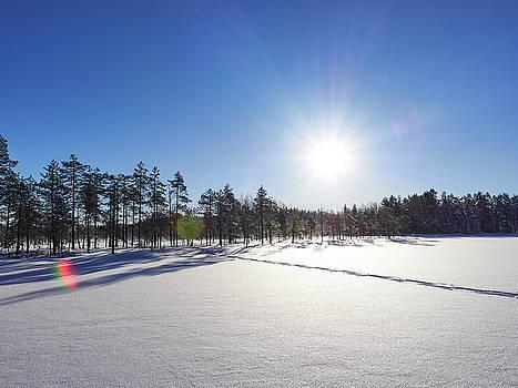 Hello sun by Jouko Lehto