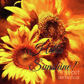 Hello Sunshine squared by Pam  Holdsworth