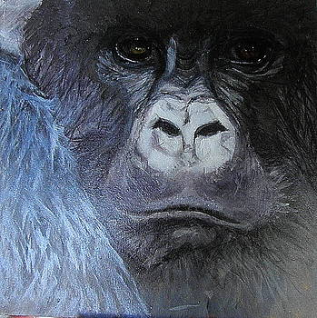 Help Buy Rainforest by Cass Oest