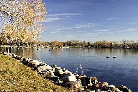 Henderson Lake Waiting for Winter by Tom Buchanan