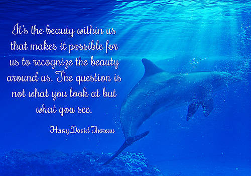 Henry David Thoreau Quote on Beauty with Dolphins by Stephanie Laird