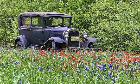 Henry the Vintage Ford Automobile by Robert Bellomy