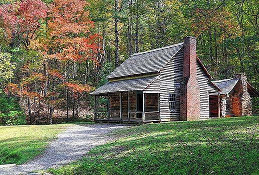 Henry Whitehead Place In Cades Cove by Carol Montoya