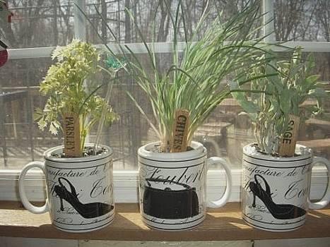 Herb Garden by Deborah Finley