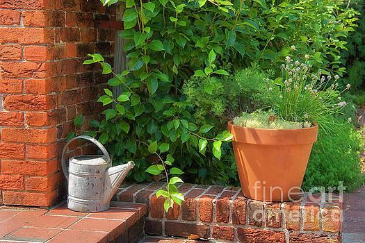 Jill Lang - Herb Gardening