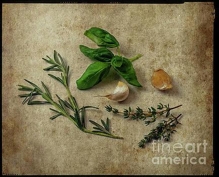 Herbs #044 by Hans Janssen