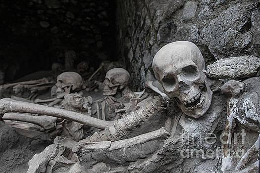 Herculaneum archaeology by Howard Ferrier