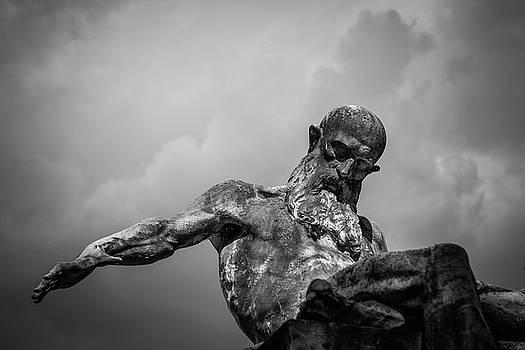 Hercule by Vincent Marguerit