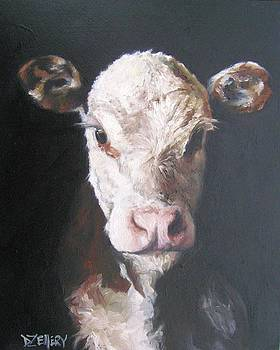 Hereford Calf by Donna Ellery