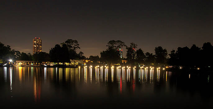 Hermann Park Night One by Joshua House