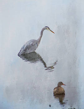 Heron and Friend 2 by Marilyn Wilson