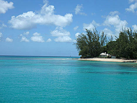 Kimberly Perry - Heron Bay Beach Barbados