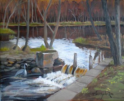Heron below the dam by Christopher Roe