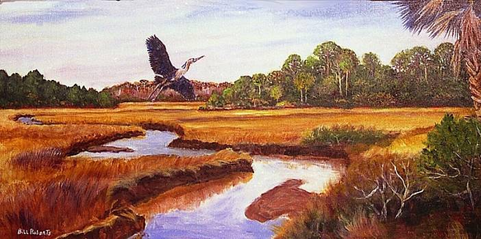 Heron by Bill Roberts