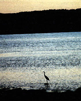 Heron in the Shoals by Lori  Secouler-Beaudry
