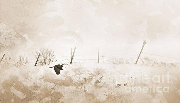 Heron in Winter by Sandra Silva