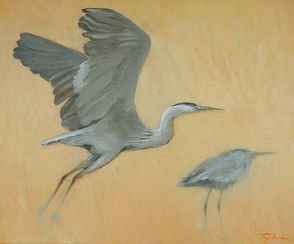 Herons by Ron Wilson