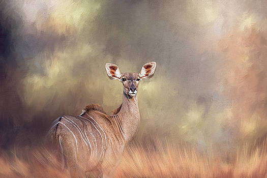 Hi there. by Lyn Darlington