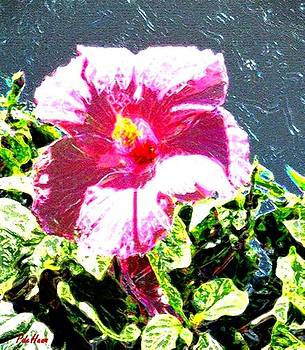 Hibiscus 3 by Peggy De Haan