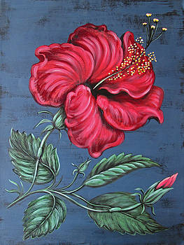 Hibiscus by Anne Winkler