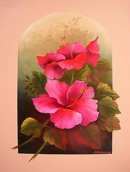 Hibiscus Garden by Francine Henderson
