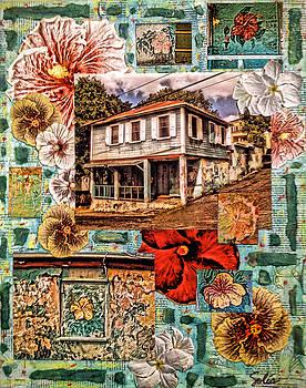 Hibiscus House, St. Croix, U.S. Virgin Islands by Sydney Solis